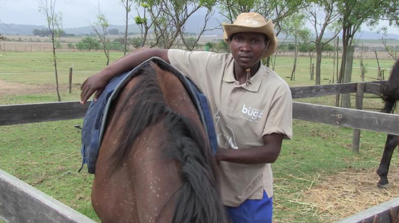 Horses for Hope 2