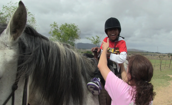 Horses for Hope 39