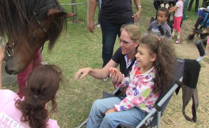 Horses for Hope 65