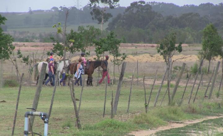 Horses for Hope 8