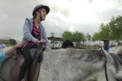 Horses for Hope 18