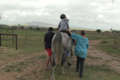 Horses for Hope 20