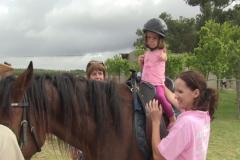 Horses for Hope 3