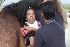 Horses for Hope 31