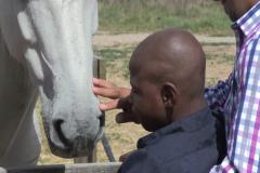 Horses for Hope 32