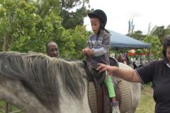 Horses for Hope 48