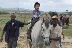 Horses for Hope 56