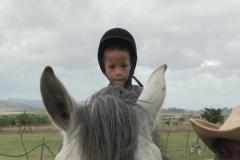 Horses for Hope 57