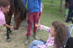 Horses for Hope 64